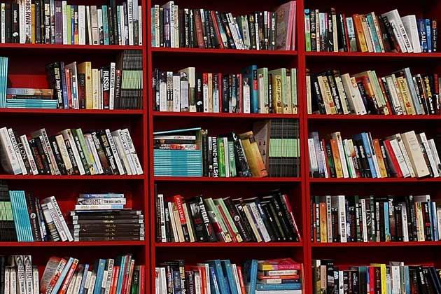 bookshelf-080811