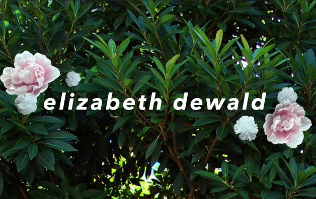 elizabethdewaldcv